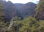 Canyon Basaseachi