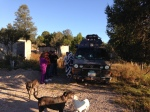 Giving a tour to the other guests at the inn, while the dogs meet the locals.