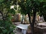 The gardens of Hotel Casa Grande Sahuaripa, Chihuhua, Mexico