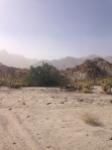 desert windstorm