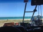 cabo pulmo windshield view