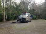 camped palmetto island