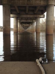 Boating under the Breaux Bridge along I-10 through the Atchafalaya Swamp