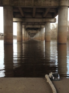 Boating under the Breaux Bridge along I-10 through the Atchafalaya Swamp