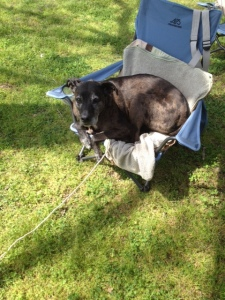 seri hanging at camp
