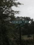 geneva georgia