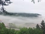 Bay of Fundy foggy day