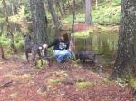 Dogs at Fundy Natl Park
