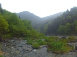 Salmon river hike Fundy national park