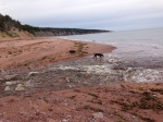 where river meets sea cape breton