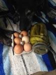 amish roadside purchases