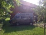 backyard gypsies1