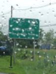welcome to rainy new york