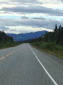 typical alaskan highway stretch