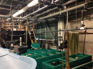 NOAA lab1