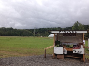 organic roadside stand