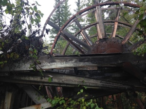 paddlewheel in the woods