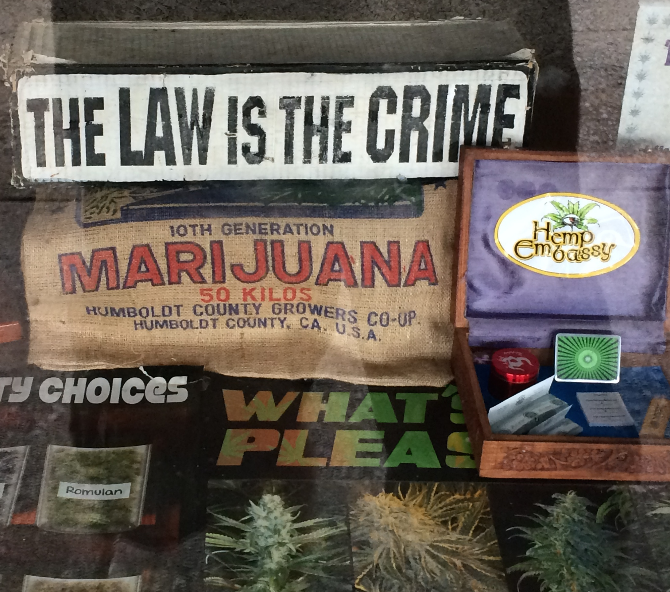 nimbin law crime