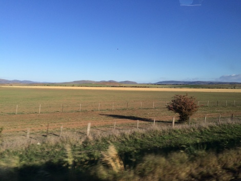 tasmanian country.JPG