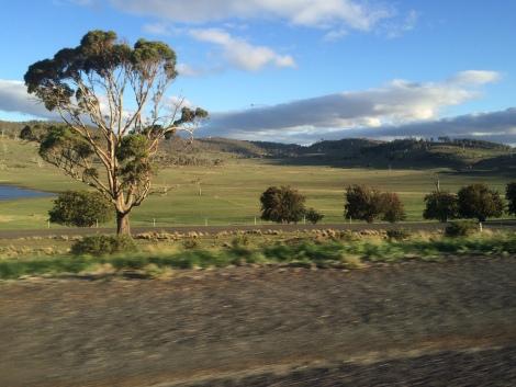 tasmanian countryside.JPG