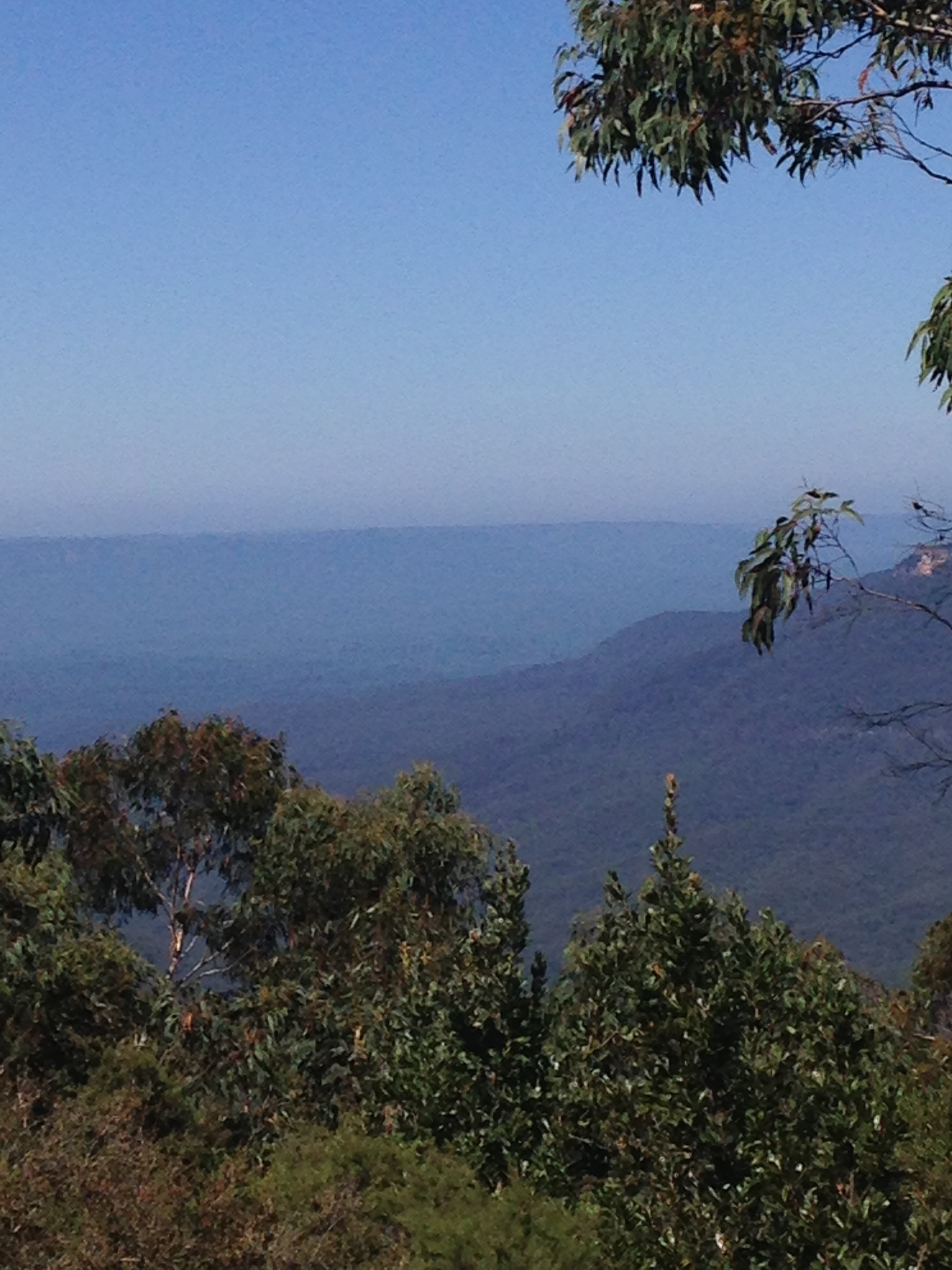 blue mountains11