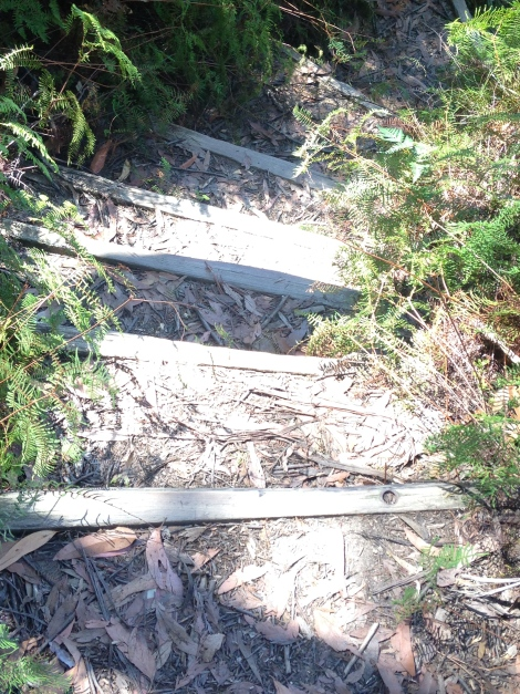 bluemountains steps