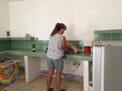 washing dog in cabina-.JPG