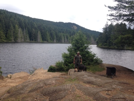 22 trout lake dog walk .JPG