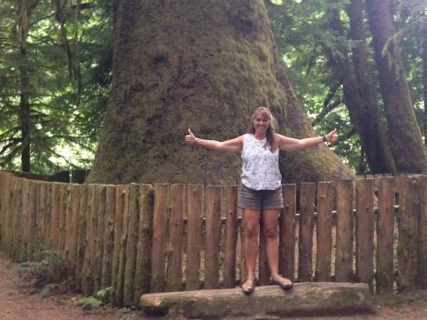 big tree birthday this big.JPG