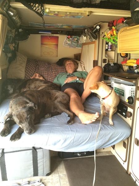 Fitterer sleeping in the van.jpg