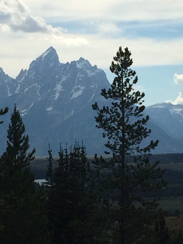 tetons from camp.jpg