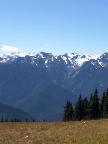 hurrican ridge.jpg