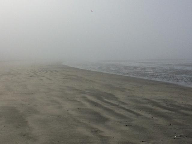 neah bay foggy.JPG