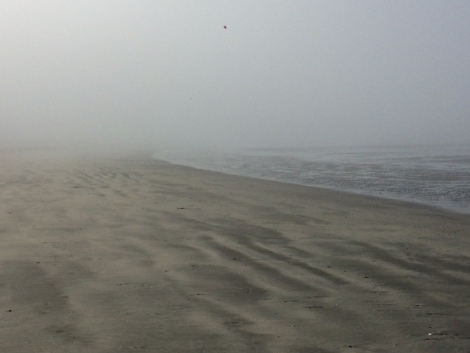 neah bay foggy.JPG