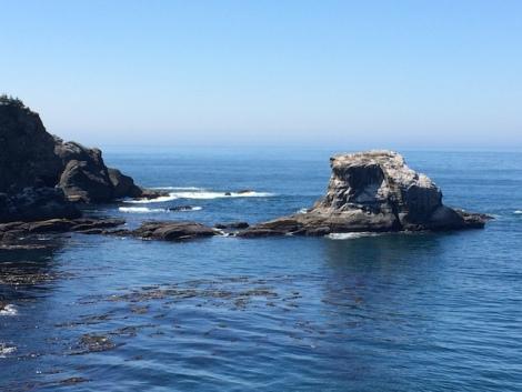 neah bay sea and stone.JPG