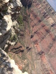 South Rim of Grand Canyon.jpg