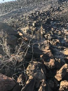 indigenous-ruins-rock-stacking