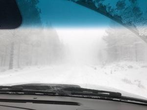 snow-trip-home