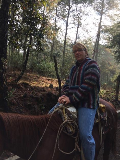 horse geneva.jpg