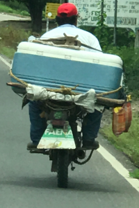 carrying ice chest