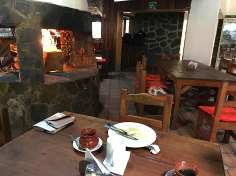 fireside dinner with cat.JPG