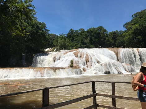 agua azul is brown.JPG