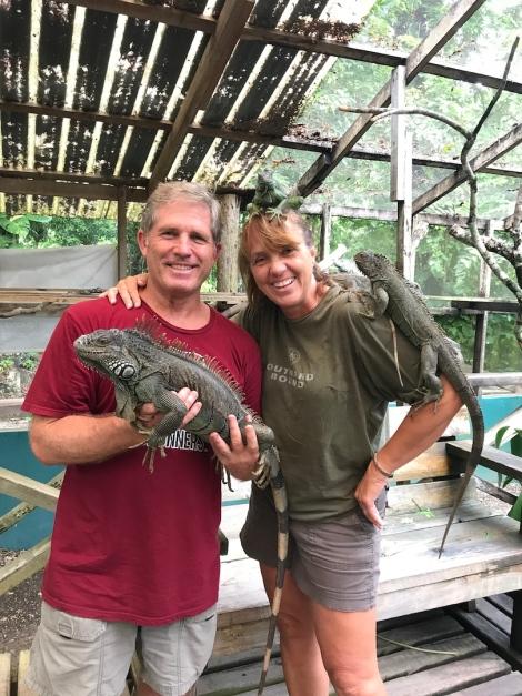 iguana couple.jpg