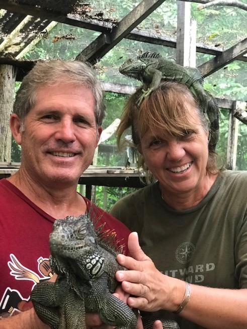 iguanas on us.jpg