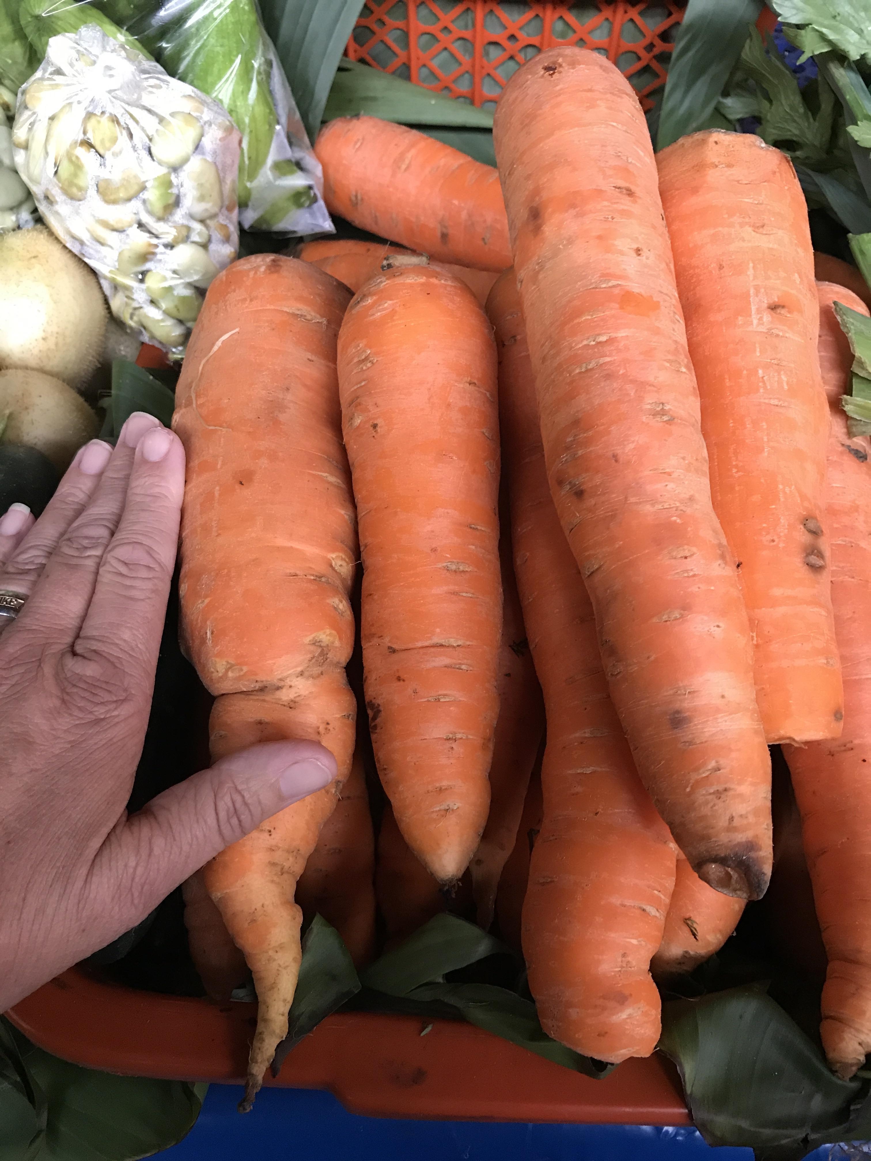 big carrots