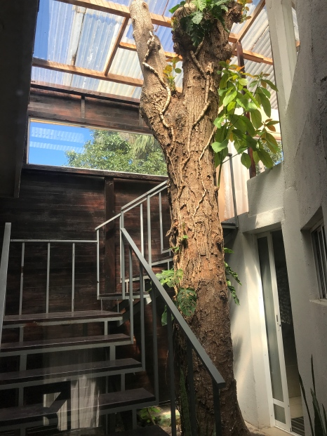 house atrium