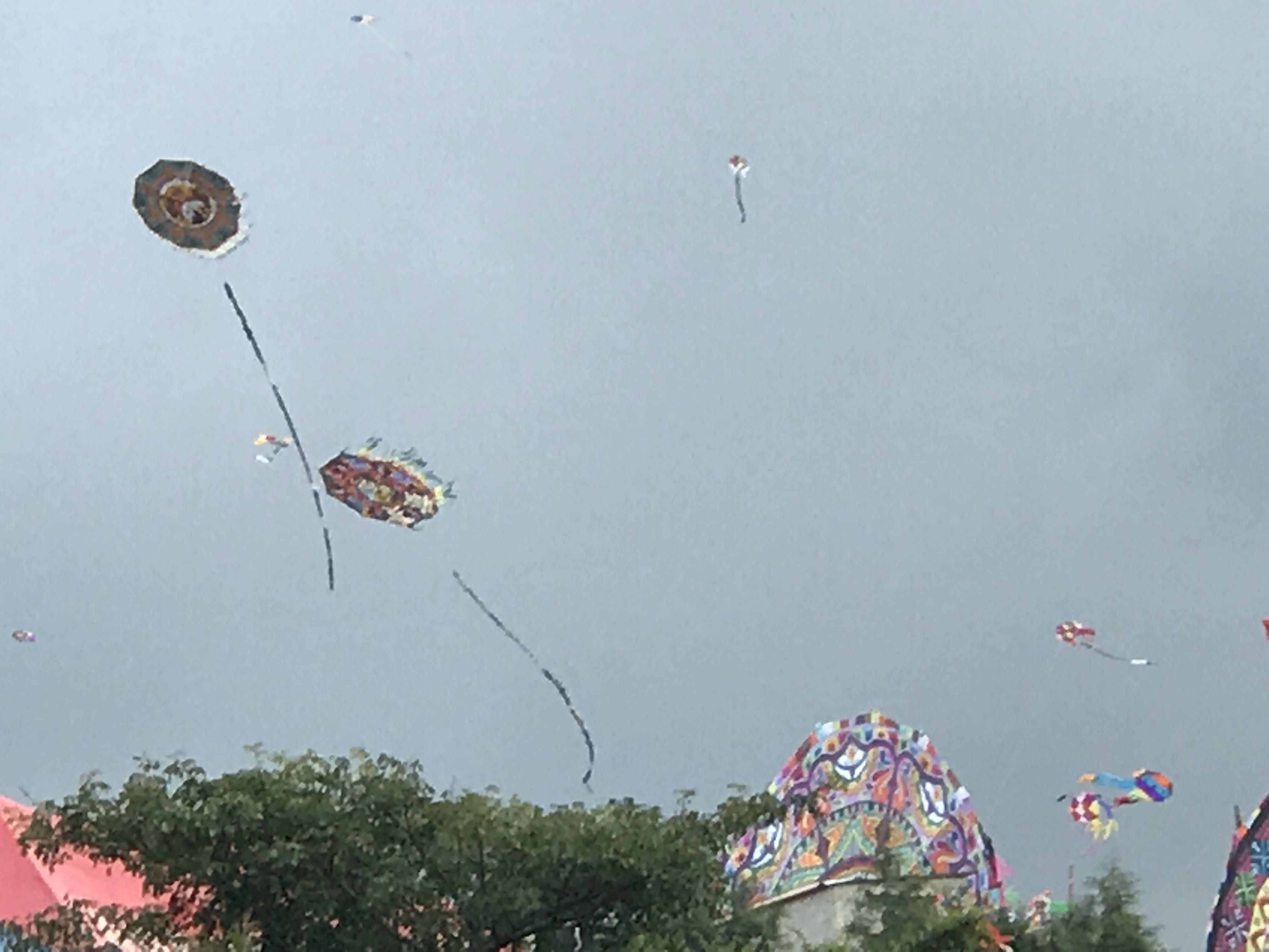 kites 10 foot flyers