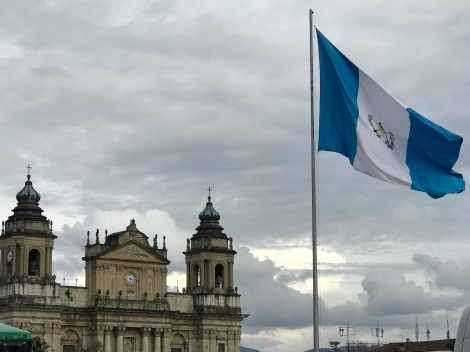 municipal palace and flag