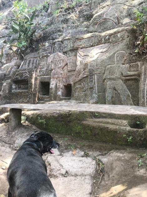 rock carvings1