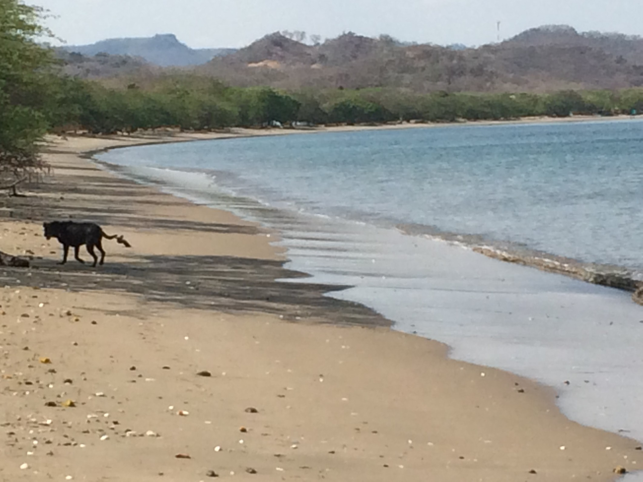 costa rica first beach zeb.jpg